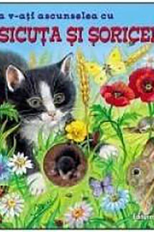 de a v ati ascunselea cu pisicuta si soricelul