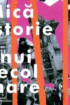 Mică istorie a unui secol mare 2